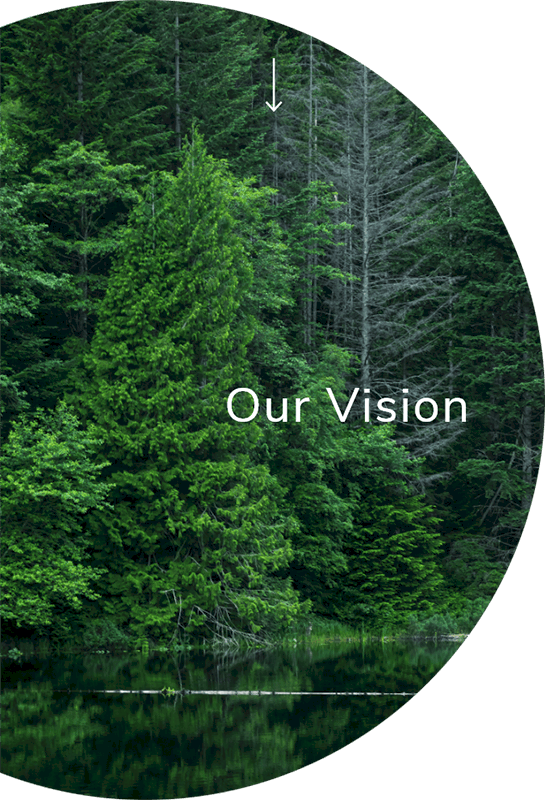 our-vision-circle_545x800px 1